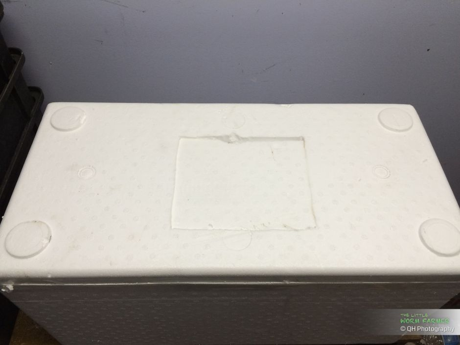 Cutting ventilation holes in a styrofoam worm bin
