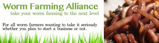 Join the Worm Farming Alliance and get the mentoring you need to succeed