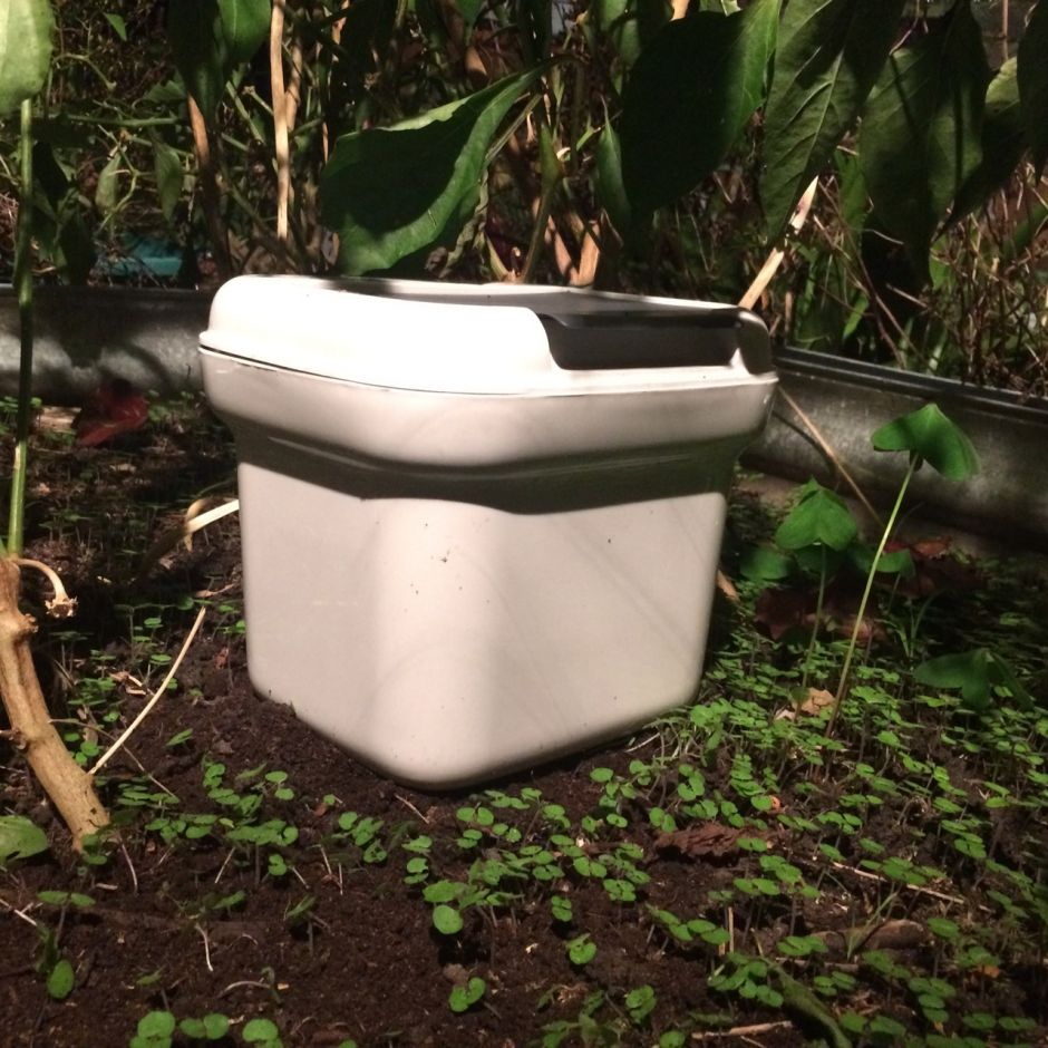 A 5 L bucket on-ground worm bin