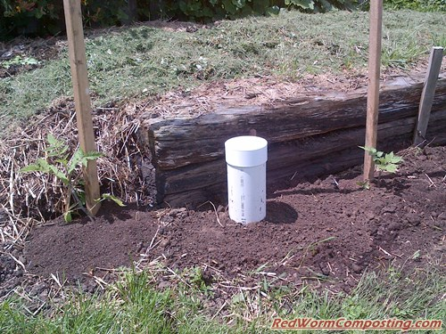 The Worm Tower, a garden worm bin that is partially underground