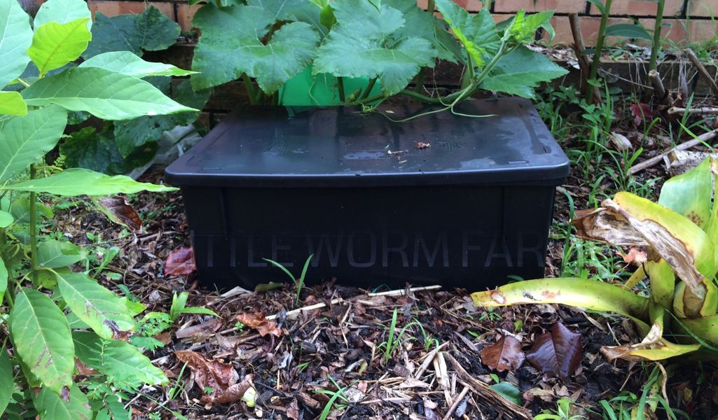 The Big Rotter, a garden worm bin that sits on top of the ground