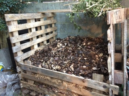 Controlling-odour-of-horse-manure-pile-with-leaf-mould.jpg