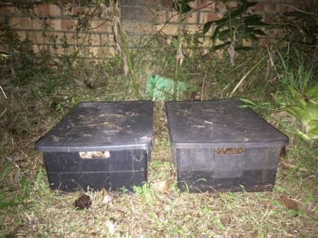 Two-Big-Rotters-composting-horse-manure.jpg